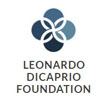 Leonardo DiCaprio Foundation Gala with NSO Entertainment
